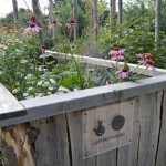 Lottery Funded Community Allotment